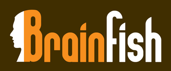 Brainfish - Direct Search Financieel personeel